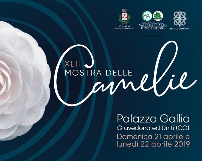 XLII Mostra delle Camelie
